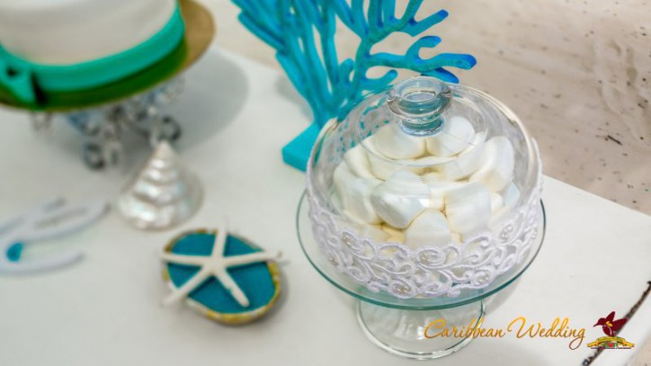 nautical-wedding-caribbean-wedding-38