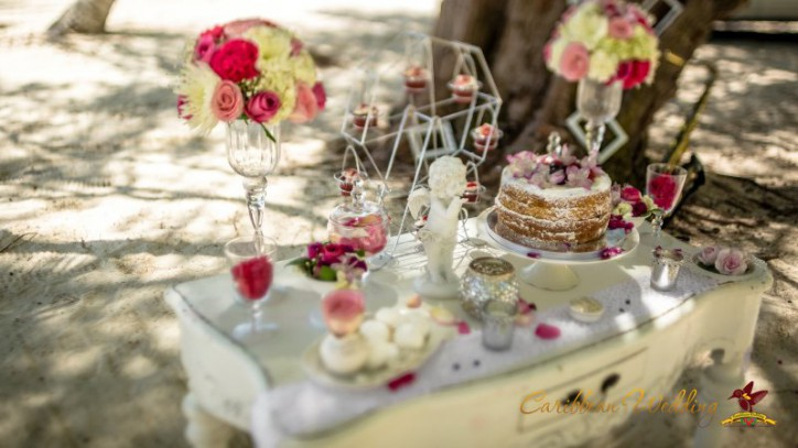weddingsindr-_04